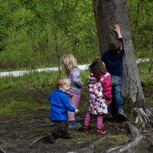 Naturerlebnis für Kinder